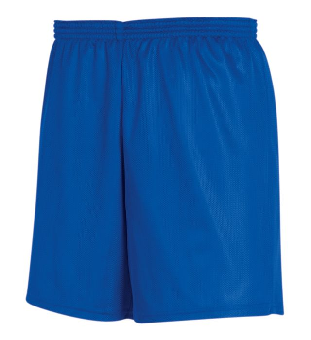 Mini Mesh Long Shorts
